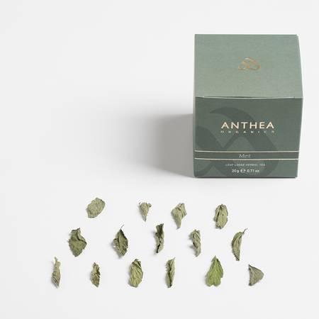 Organic Mint Tea Loose Leaf