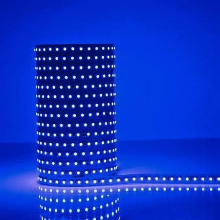 Whitenergy Taśma LED 5m 120szt/m SMD3528 9.6W/m 12V IP20 10mm niebieska bez konektora